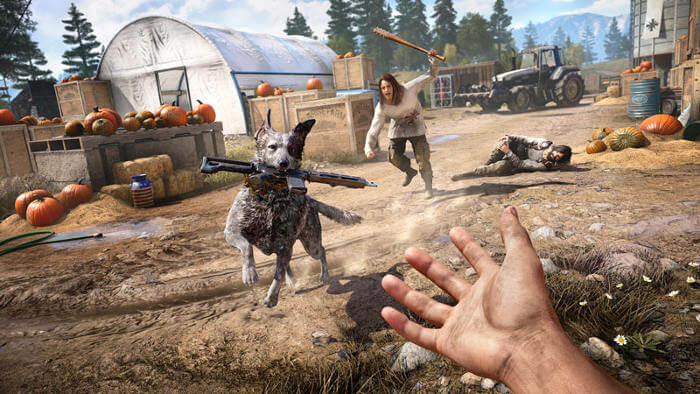 dog stealing gun far cry 5