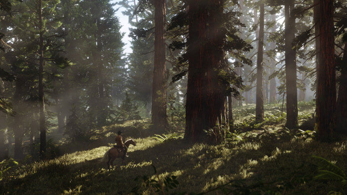 red dead redemption 2 forest